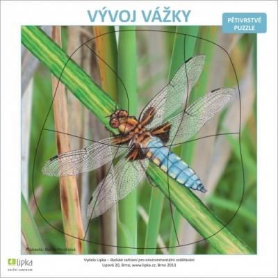 Vývoj vážky - puzzle  (B. Ponížilová)